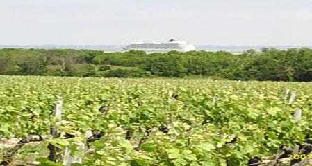 圣多利城堡干红葡萄酒 (梅多克中级庄) 梅多克中级庄